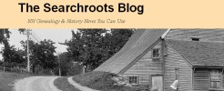 The Searchroots Blog